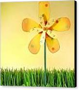 Summer Fun In The Grass Canvas Print by Sandra Cunningham