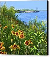 Summer In Toronto Park Canvas Print by Elena Elisseeva