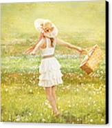 Summer Picnic  Canvas Print by Cindy Singleton