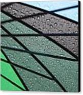 Summer Shower Canvas Print by Denice Breaux