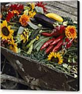 Sunflowers, Dahlias, Eggplants, Pepper Canvas Print