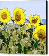 Sunflowers Sunbathing Canvas Print