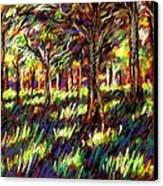 Sunlight Through The Trees Canvas Print by John  Nolan