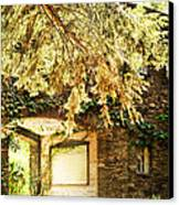 Sunlit Stone Building With Grapevines Canvas Print by HD Connelly