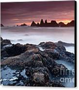 Sunset At Seal Rock Canvas Print