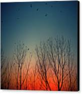 Sunset Behind Trees Canvas Print by Luis Mariano González