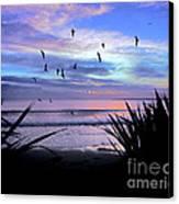Sunset Down Under Canvas Print