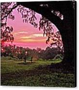 Sunset On The Bench Canvas Print