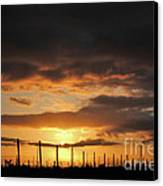 Sunset On The Vineyards Canvas Print by Nancy Chambers