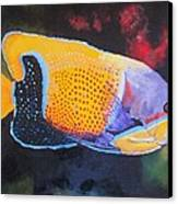 Sutton Fish Canvas Print by Terry Gill
