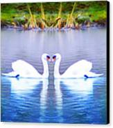 Swan Love Canvas Print by Bill Cannon