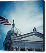 Symbol Of Freedom Canvas Print by Toni Hopper