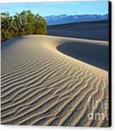 Symphony Of The Sand Canvas Print by Bob Christopher