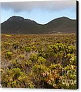 Table Mountain National Park Canvas Print by Fabrizio Troiani