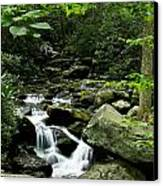Tennessee Waterfall Canvas Print by Glenn Lawrence