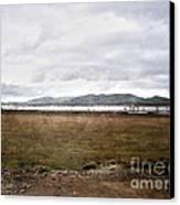 Textured Land Canvas Print