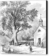 The Ancient Oak Canvas Print by Granger