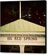 The Big Red Spring Canvas Print by Lisa Russo