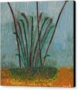 The Bog Pond Canvas Print