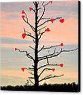 The Fall Of Love Canvas Print by Bill Cannon