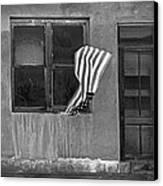 The Flag A Window And A Door Canvas Print by James Steele