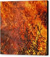 The Flames Of A Controlled Fire Canvas Print