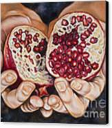 The Fruit Of Jesus' Sacrifice II Canvas Print by Ilse Kleyn