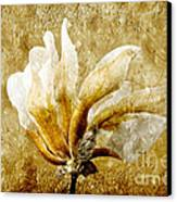 The Golden Magnolia Canvas Print by Andee Design