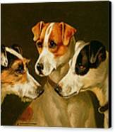 The Hounds Canvas Print by Alfred Wheeler