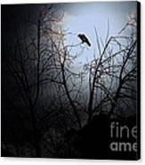 The Night The Raven Appeared In My Dream . 7d12631 Canvas Print by Wingsdomain Art and Photography