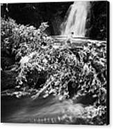 the river at the Gleno or Glenoe Waterfall beauty spot county antrim Canvas Print