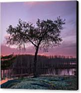 The Tree Of Life Canvas Print by Dustin Abbott