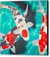 Three Koi Canvas Print by Daniel Jean-Baptiste