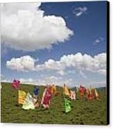Tibetan Prayer Flags In A Field Canvas Print by David Evans