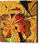 Tiger Lily Still Life  Canvas Print