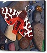 Tiger Moth On River Rocks Canvas Print by Amy Reisland-Speer