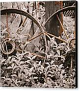 Time Forgotten Canvas Print by Carolyn Marshall