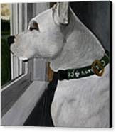 Todd Canvas Print by Patrick Kelly