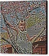 Tomboy In The Tree Canvas Print by Randall Branham