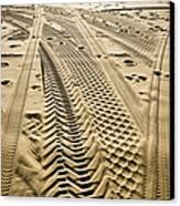Tracks In . Sand Canvas Print by Sam Bloomberg-rissman