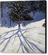 Tree And Two Tobogganers Canvas Print by Andrew Macara