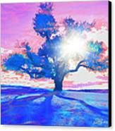 Tree Art 001 Canvas Print by Suni Roveto