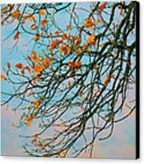 Tree Branches In Autumn Canvas Print