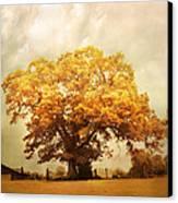 Tree Of Joy Canvas Print by Jai Johnson