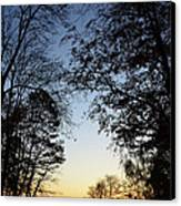 Tree Silhouette At Sunset 1 Canvas Print by Bruno Santoro
