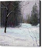 Trees In A Winter Fog Canvas Print