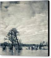 Trees In River Rhine Canvas Print