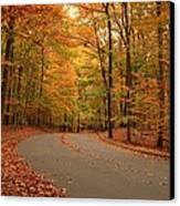Trees Of Autumn - Holmdel Park Canvas Print by Angie Tirado