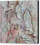 Tribulations Canvas Print by David  Beers