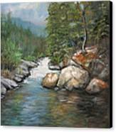 Trout Stream Canvas Print by Max Mckenzie